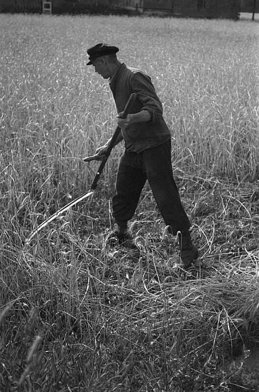 man with scythe and grass best petrol strimmers