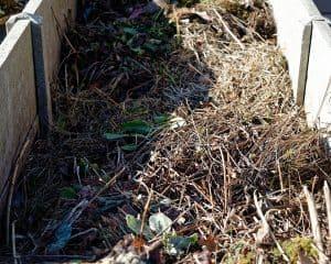 grass compost bin
